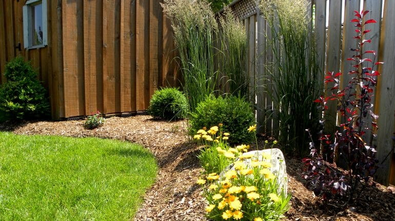 Garden Plantings - London, Ontario Landscaping & Custom Landscape Design