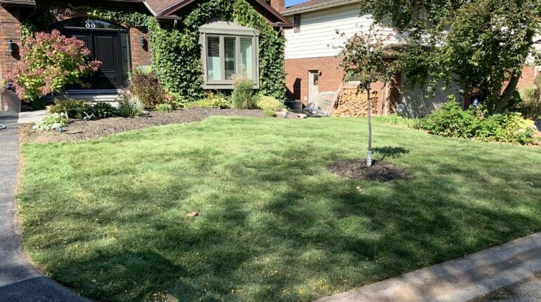 London, Ontario Landscaping - SimpliScapes Front Yard Sod Installation Website After