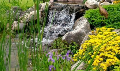 Pond Installation London, Ontario - SimpliScapes